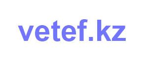 vetef-logo